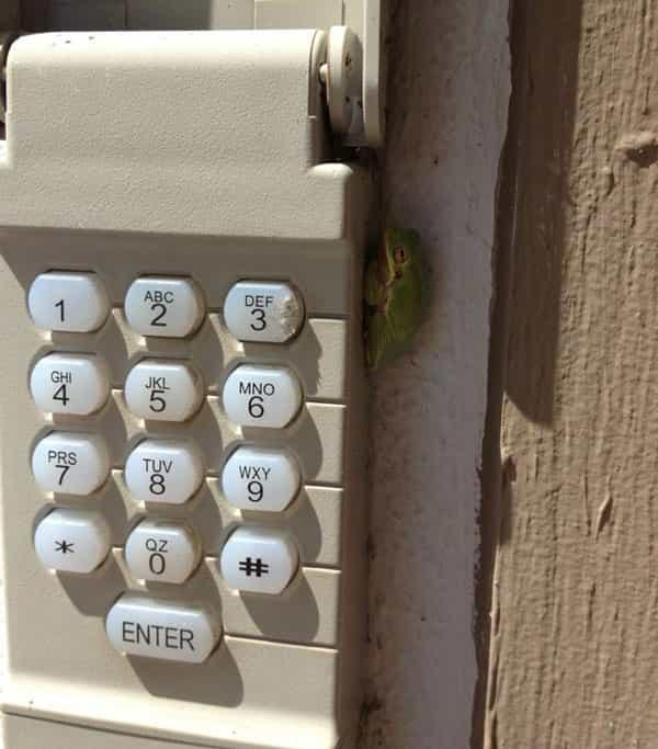 Opener keypad garage door repair Portland